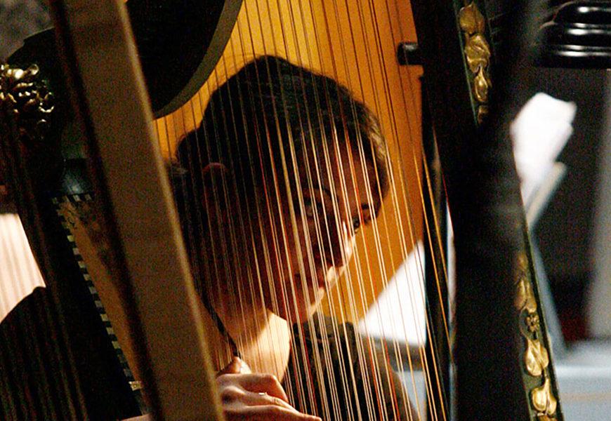 Corso Musica Antica Arpa Rinascimentale Barocca