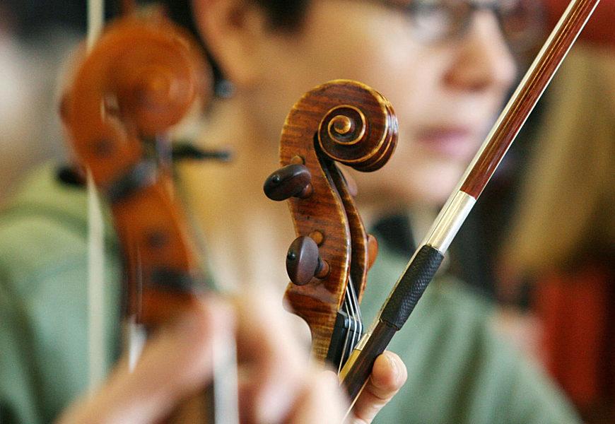 Corso Musica Antica Viola Barocca